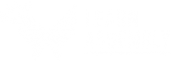 Logo Learn Assembly
