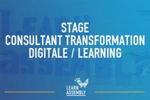 offre de stage consultant learning